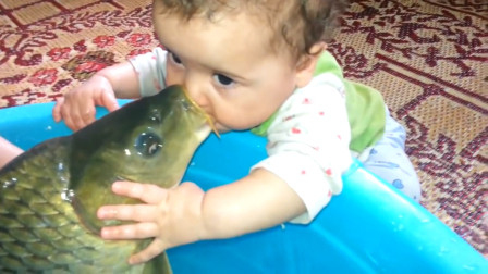 宝宝亲了一口老爸刚钓的鱼,不料下一秒的画面,爸妈都傻眼了