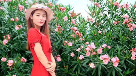 杨钰莹《茶山情歌》,歌声甜美动听浓情化不开,听一次醉一次