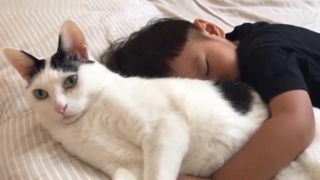 弟弟抱着猫咪睡觉,猫咪都不敢动了