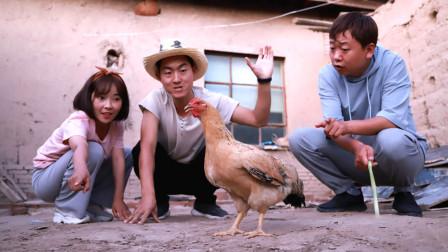 姐弟俩吃大公鸡,让大公鸡自己选择命运,没想大公鸡每次都选择放生