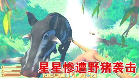 木筏求生:惨遭野猪袭击,星星召集一帮人开始报复!