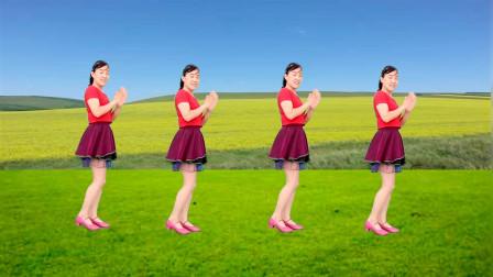 点击观看《无基础玫香舞蹈教学视频 纳西三部曲32步手把手口令讲解》