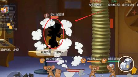 猫和老鼠:全网最惨母猫,同时被4只鸟轰炸?站都站不直了
