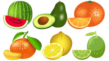 快乐英语记单词水果英语大全西瓜橙子柠檬橘子鳄梨的英语单词学习