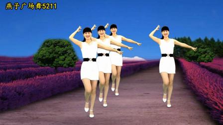 点击观看《燕子5211轻松简单广场舞教学视频《为何要伤我的心》 附正背面分解》