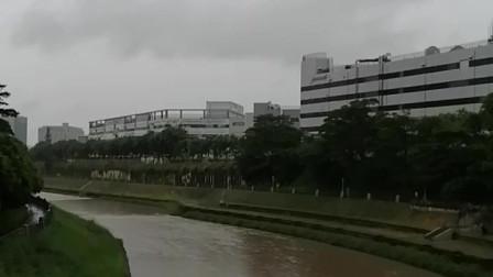 河的对面就是深圳龙华富士康厂区了