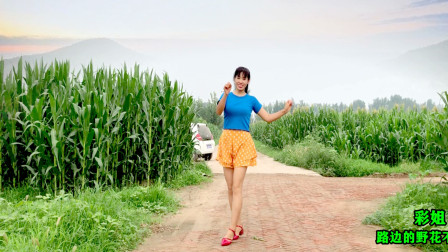 点击观看《阿采精选入门广场舞《路边的野花不要采》歌甜舞美,简单易学》