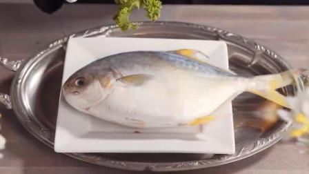 当一只猫有了钱后,从此过上了大鱼大肉的生活