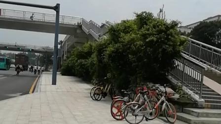 深圳龙华富士康南门处的大天桥,十年前天桥上特别热闹