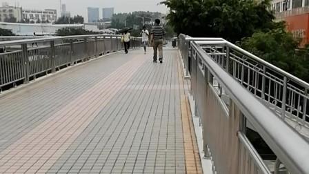 深圳龙华富士康南门天桥,不知道从何时起,这座天桥变得这么洁净了