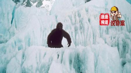 女子在喜马拉雅被雪怪解救?神秘档案让人着迷!