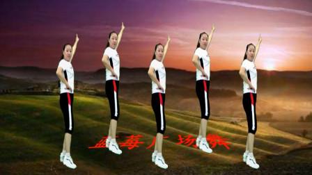 点击观看《32步弹跳广场舞《花开的时候你就来看我》蓝莓思洁舞蹈轻松简单》