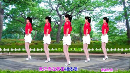 点击观看《河北青青水兵舞教学视频《往事只能回味》 16步分解三分钟学会》