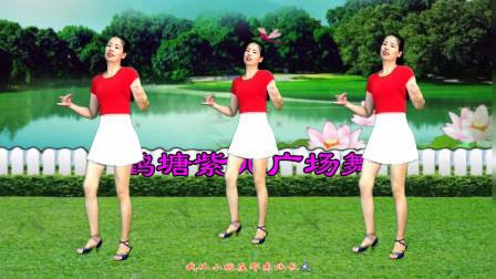 点击观看《鹤塘紫儿广场舞《东北的冬东北的情》改编简单摆胯32步》