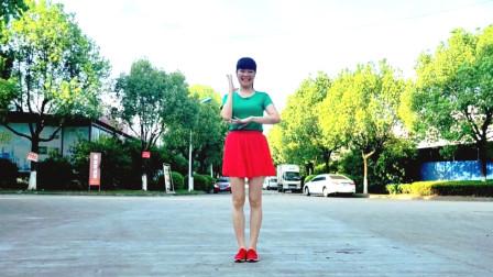 麦芽坝坝舞教学视频《阳光彩虹小白马》 跟我学起来