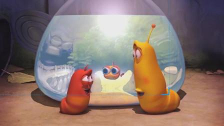 为难之处显身手,大黄小红妙招救小金鱼!爆笑虫子游戏