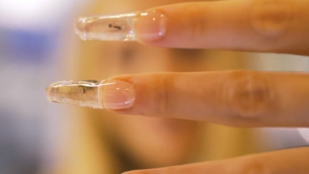 用活蚂蚁做美甲,看着蚂蚁在指甲里,爬来爬去,网友:好恶心啊!