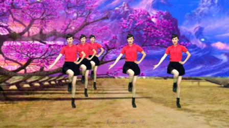 0基础水兵舞《美了你我他》钦钦广场舞视频