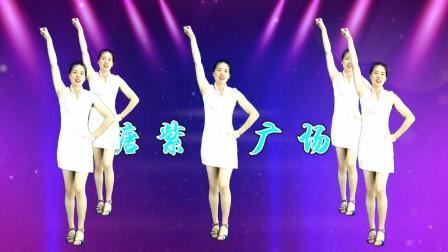 点击观看《鹤塘紫儿广场舞 64步健身舞教程分解野花香DJ》