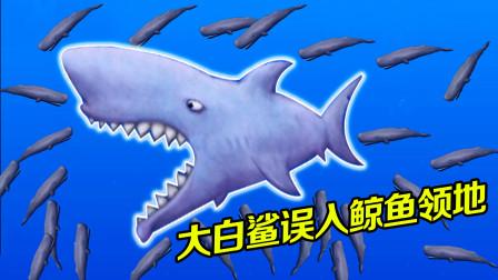 美味海洋:鲨鱼误入鲸鱼领地,带鱼群转圈圈,长大后把它们全吃光