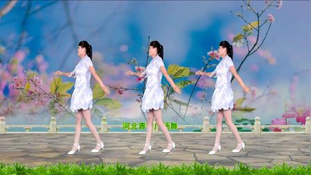 点击观看《怀旧经典广场舞曲《千年等一回》 河北青青广场舞32步教程分解》