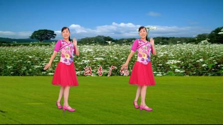 简单热门广场舞《荞麦花》 玫香广场舞
