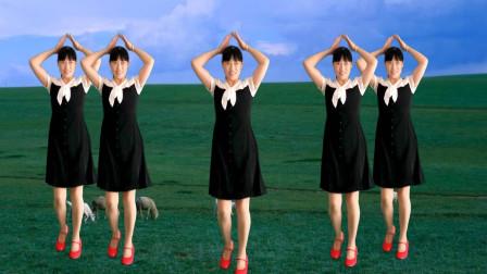 动听情歌广场舞《DJ风雨中的情》简单32步,好听好看,附教学!