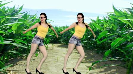 青青世界广场舞 奇葩姐妹玉米地头跳广场舞有意思