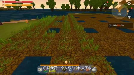 蓝小胖迷你世界:挑战孤岛生存100天的第20天,土地扩建完成,出门寻找小麦种子,遇到神秘商人购买宝贝!