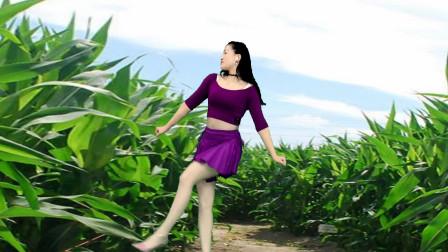 这么接地气广场舞《田野风光无限好》 青青世界广场舞