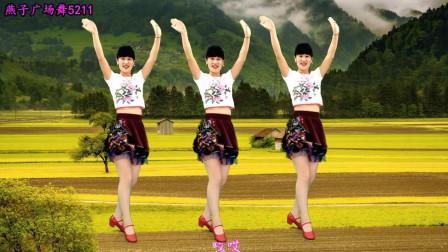 点击观看《十年金曲广场舞《逛新城》 燕子广场舞5211》
