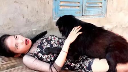 美女喜欢抱着狗睡觉,突然感觉身体不适,去医院被吓一大跳