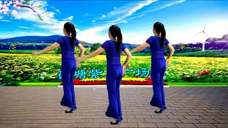 点击观看《鹤塘紫儿广场舞 32步《风水轮流转》背面演示》