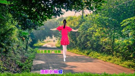 点击观看《零基础32步广场舞视频教学酒醉的蝴蝶 河北青青广场舞》