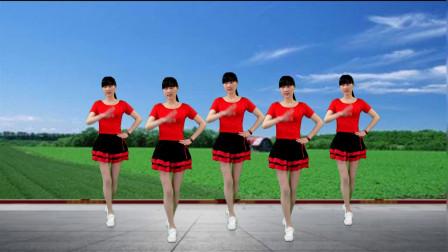 点击观看《简单入门16步广场舞 凤凰传奇舞曲《自由飞翔》适合初学者》