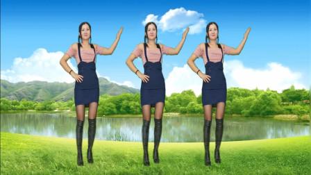 神农舞娘广场舞蹈视频《踏浪》 适合年轻妇女