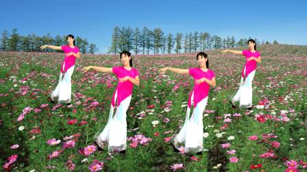 点击观看《2019热门32步健身舞蹈视频 阿采广场舞学跳《荞麦花》》
