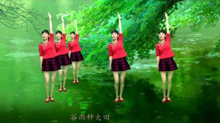 钦钦广场舞 《二十四节气歌》传统秧歌步的练习