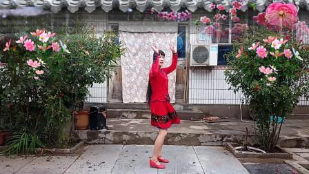 优美32步广场舞《谁说梅花没有泪》
