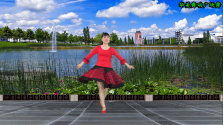 点击观看《华美舞动广场舞天上掉下个林妹妹 舞步简单易学》