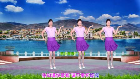 点击观看《河北青青广场舞教学视频 适合中年妇女32步老婆你听我说分解》