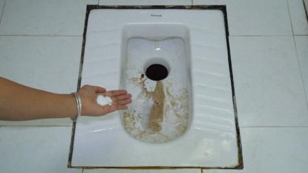 厕所脏了别拿洁厕灵,家政阿姨教我小窍门,轻轻一刷就干净