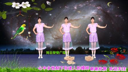 点击观看《广场舞梦醉荷塘32步河北青青教程分解 手把手慢动作》