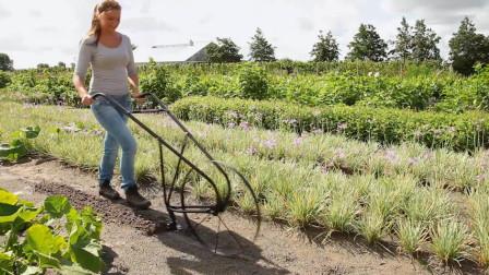 国外美女大学生发明独轮锄地机,一天能锄2亩地,20元造一个!