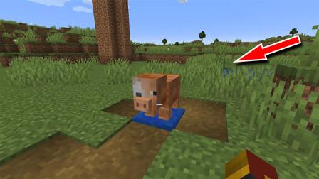 我的世界:超奇葩的爆炸猪,有了这个改良版再也不用TNT了