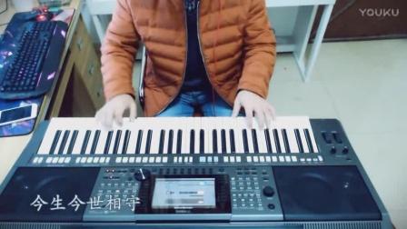 电子琴演奏经典老歌《风中的承诺》超越歌声的美,谁听都得醉
