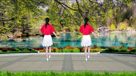 河北青青广场舞《唱着情歌流着泪》32步背面演示和口令分解双教学