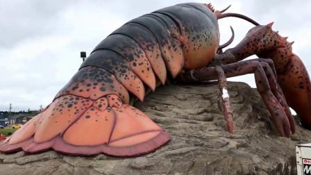 渔民捕获世界上最大龙虾,长1.2米重20公斤,最后却放生了