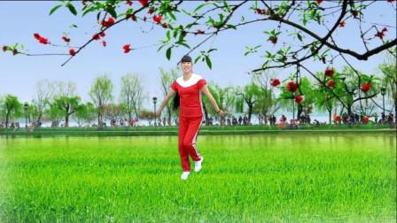 点击观看《辣妹子的爱广场舞视频怎么下载 看钰钰广场舞》