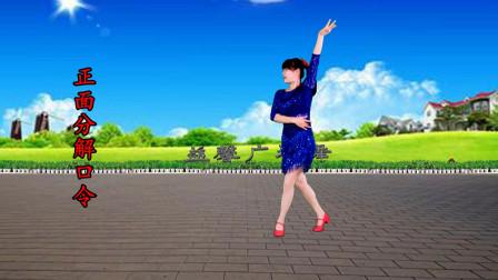 大妈舞蹈酒梦分解教学视频下载 益馨广场舞